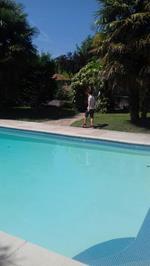 Pool picnic.